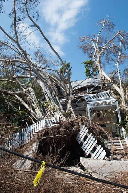 2017 worst year for national disasters
