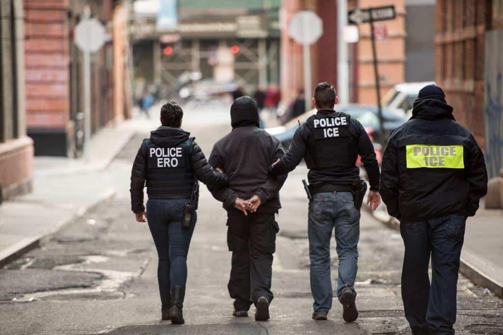 Image result for ice arrests