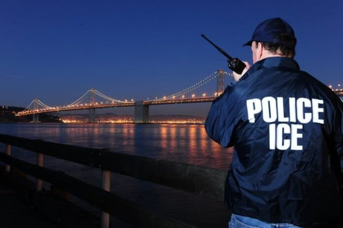 Single Post Template - Magazine PRO Homeland Security Today