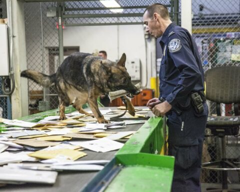 Customs and Border Protection K9 finds drugs