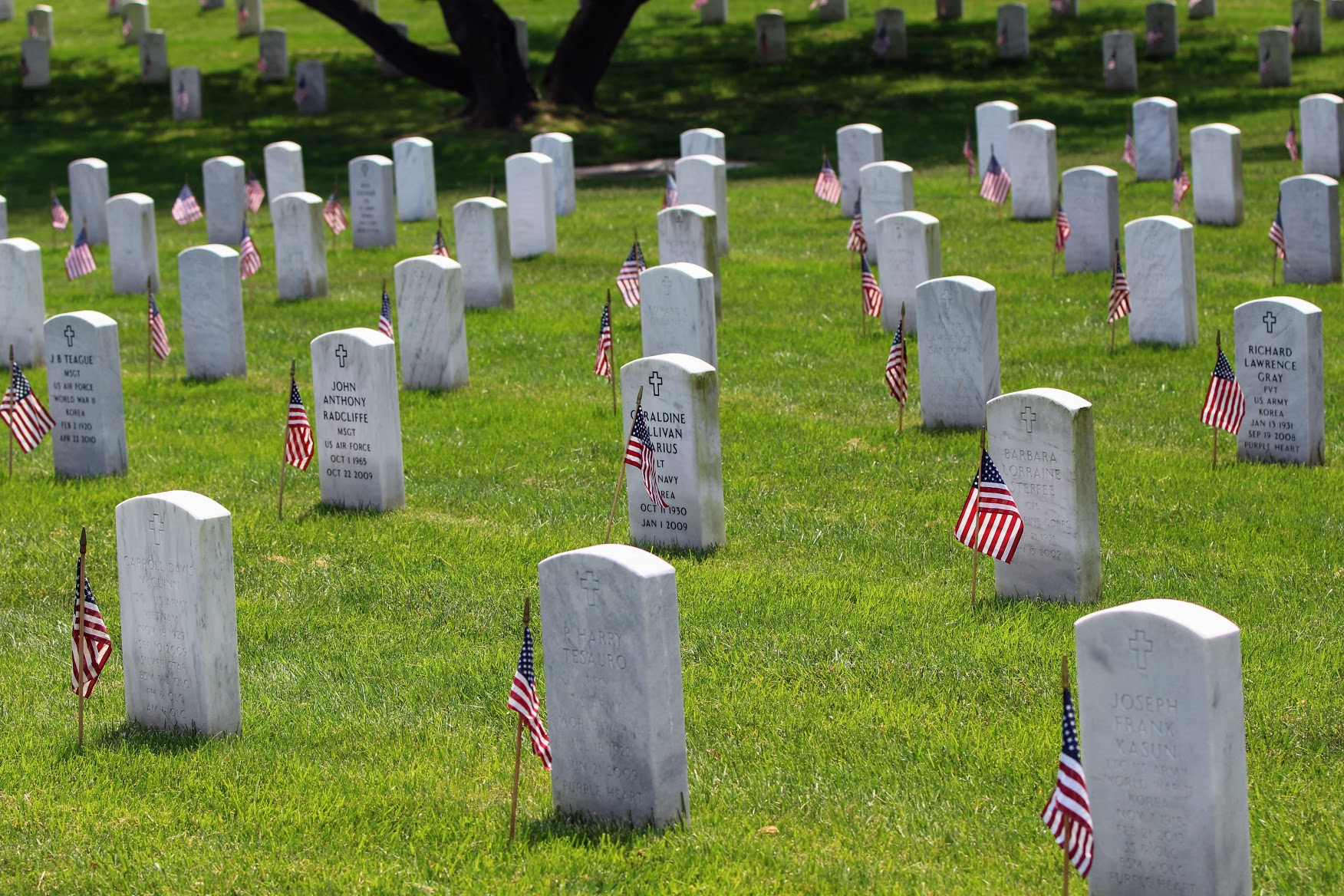 memorial day arlington flags