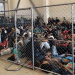 cbp detainees